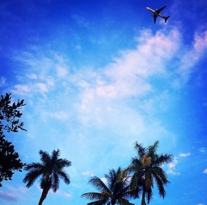 instagram, cliche, pictures, photos, images, how to take better pictures, miami, south beach, airplane, palm trees